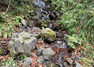 五泉市 仙見川渓谷へ 庭づくりの風景を求めて