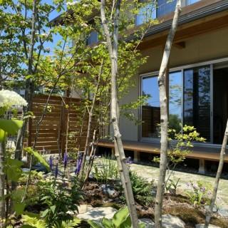 デッキから眺める雑木の庭 新潟市
