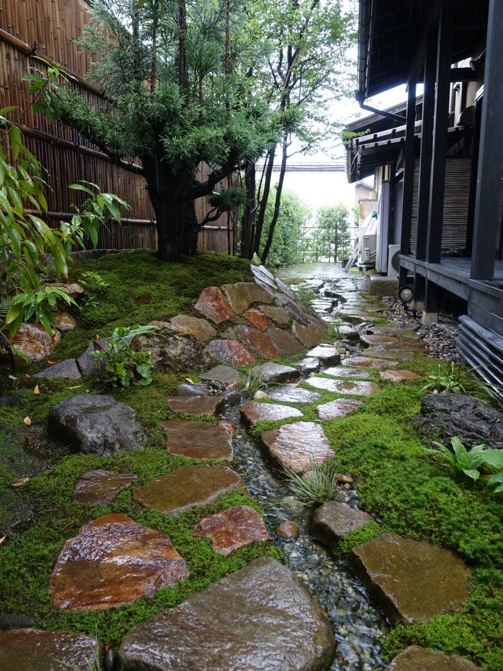 台杉と流れのある苔庭  店舗の和風庭園