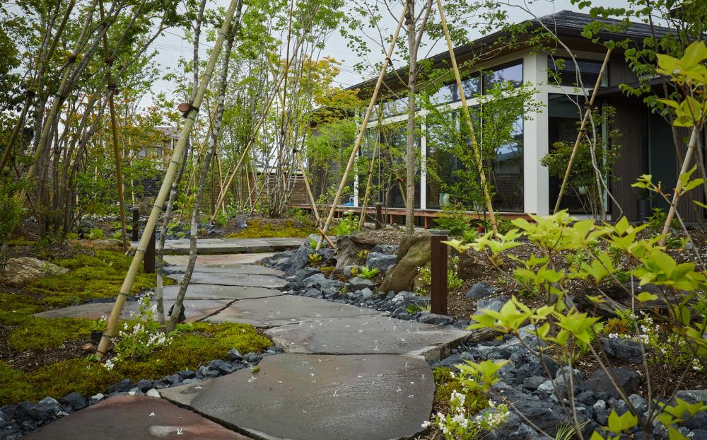 苔や下草が繁茂し馴染むとより野山の風景に近づきます。