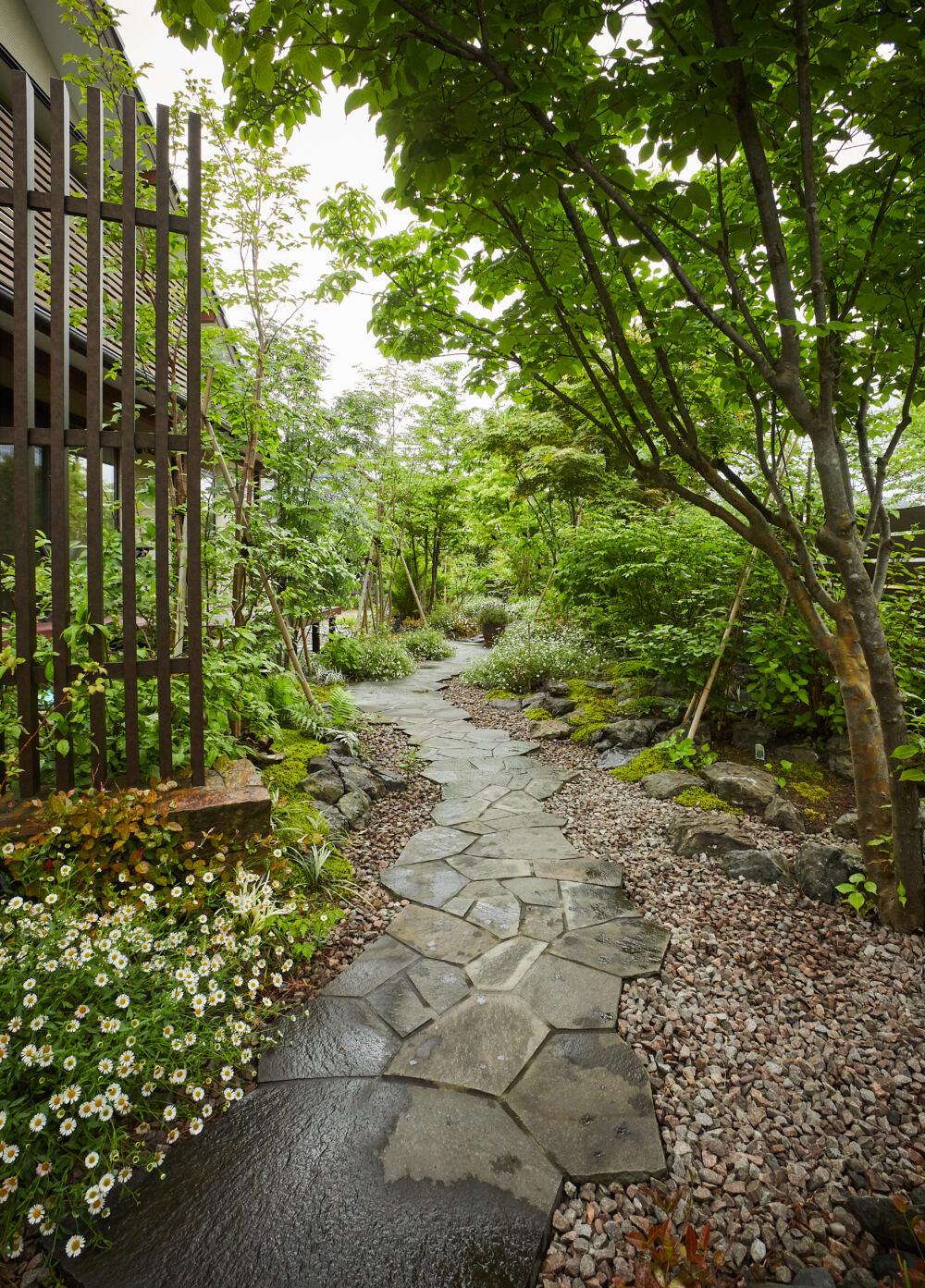 モダンな雑木の庭。苔・半日陰の庭