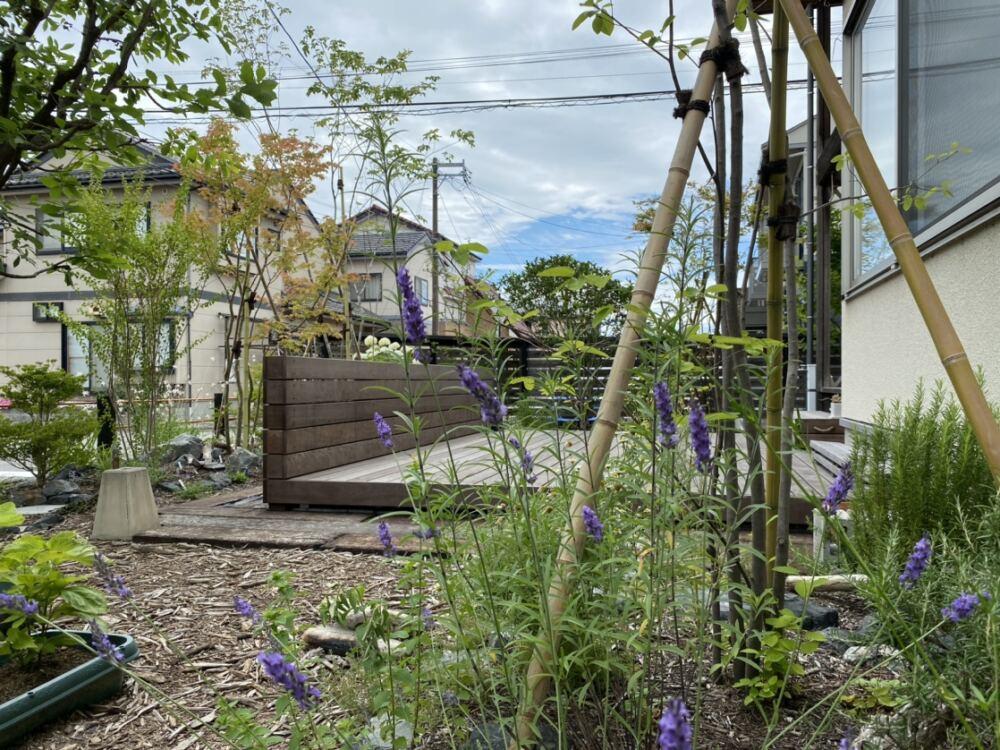 物置前の家庭菜園エリア。 左の植栽スペースにはジューンベリー。 足元にはローズマリーやイタリアンパセリ、セージアズレア、オレガノなどのハーブエリア。 雑草対策も兼ね、ウッドチップでマルチングしました。